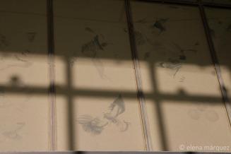 Las marcas de las palomas en los cristales del Canódromo.