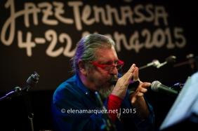 150319_Nels Cline Singers-Terrassa_0058